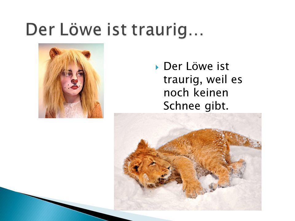 Der Löwe ist traurig… Der Löwe ist traurig, weil es noch keinen Schnee gibt.