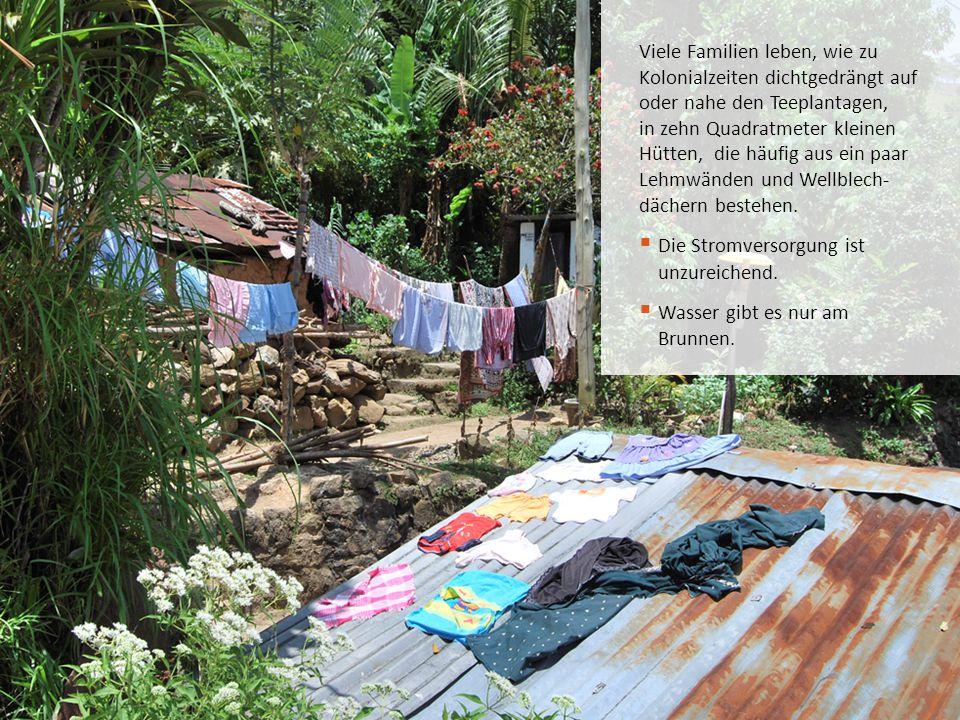 Viele Familien leben, wie zu Kolonialzeiten dichtgedrängt auf oder nahe den Teeplantagen, in zehn Quadratmeter kleinen Hütten, die häufig aus ein paar Lehmwänden und Wellblech- dächern bestehen.