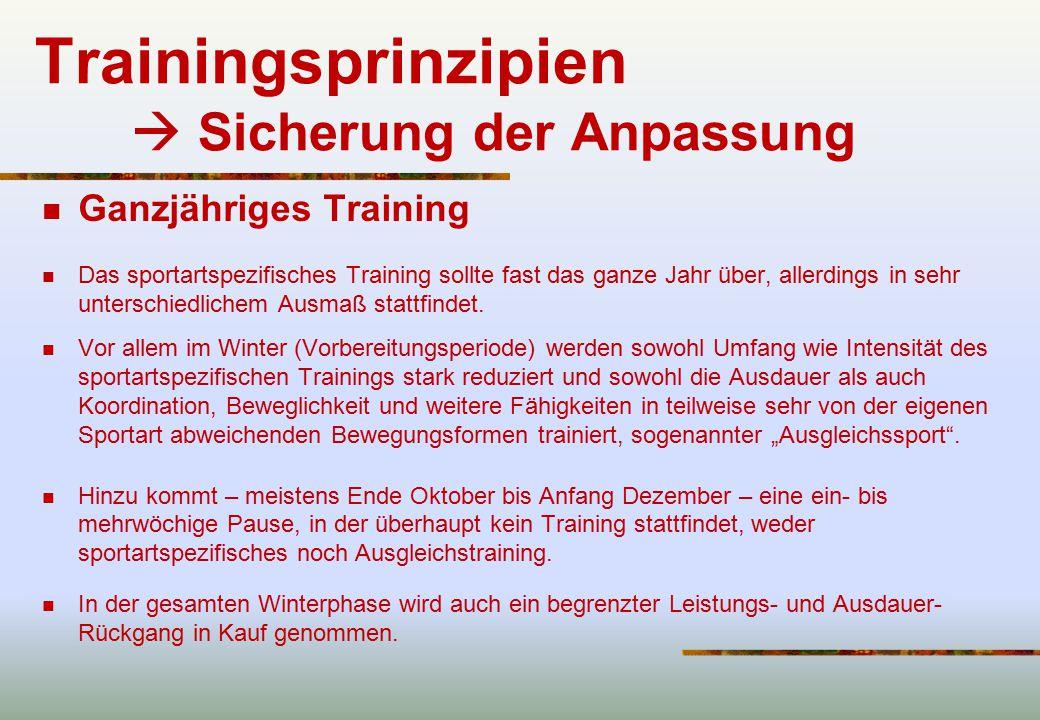 Trainingsprinzipien  Sicherung der Anpassung
