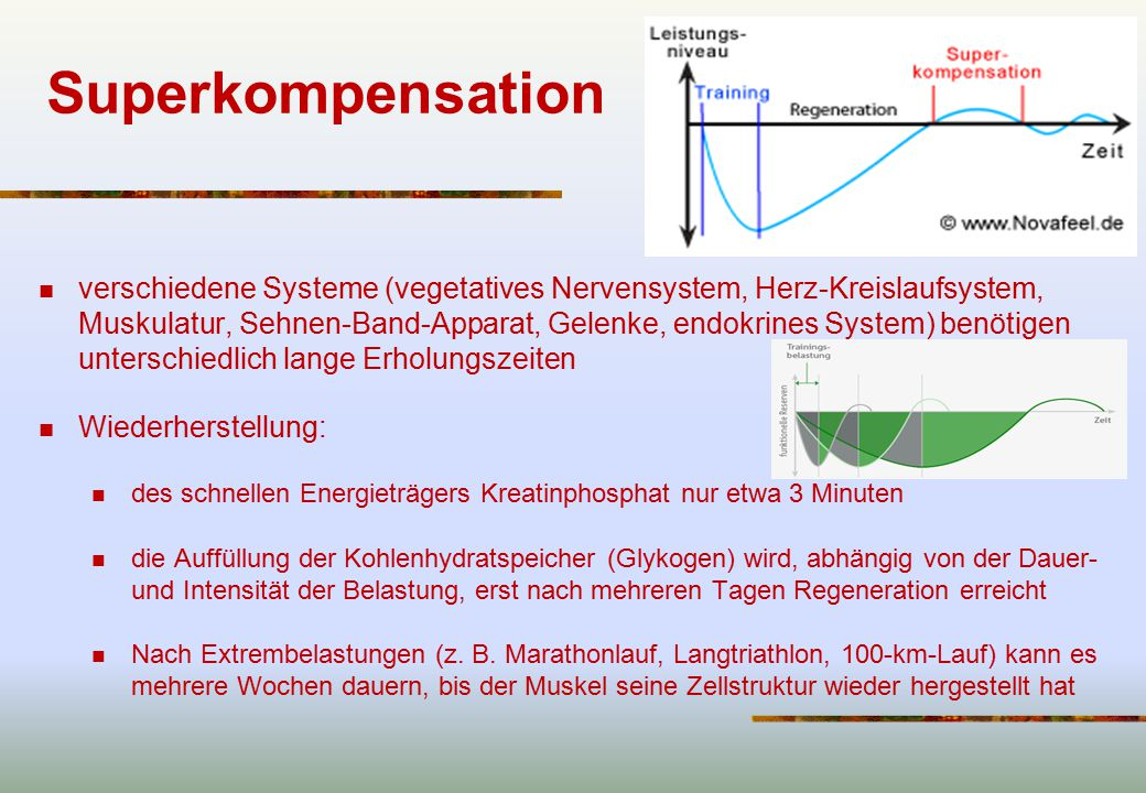 Superkompensation