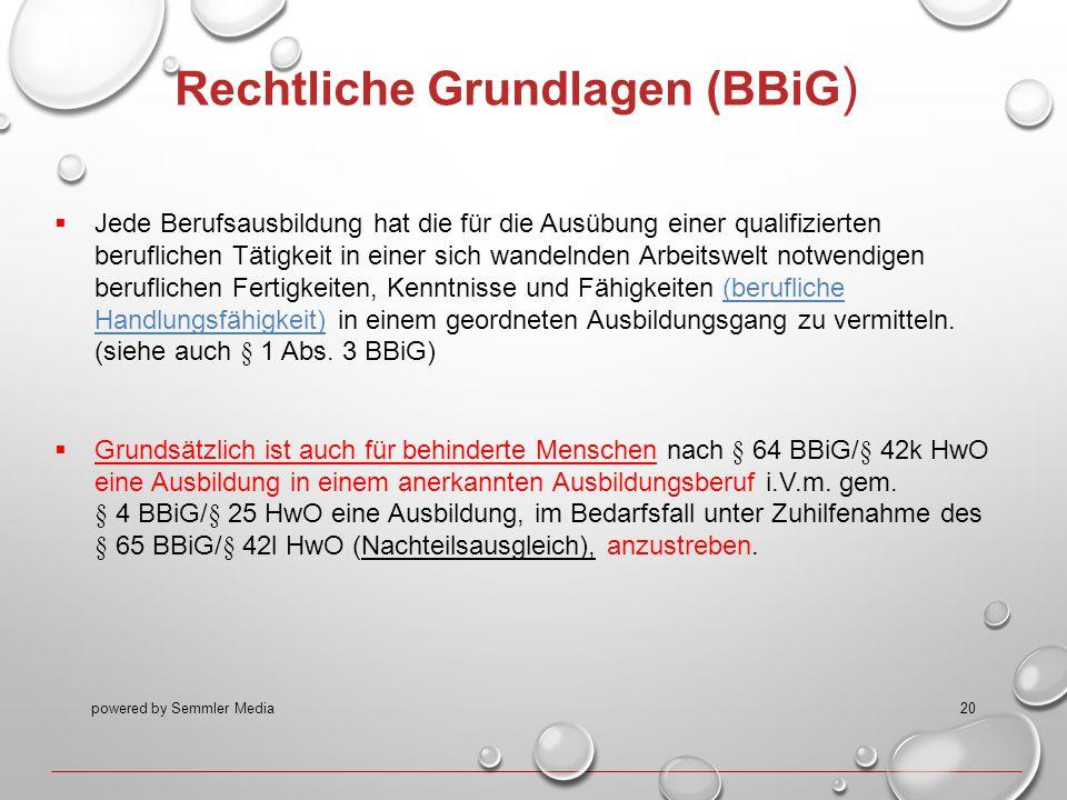 Rechtliche Grundlagen (BBiG)