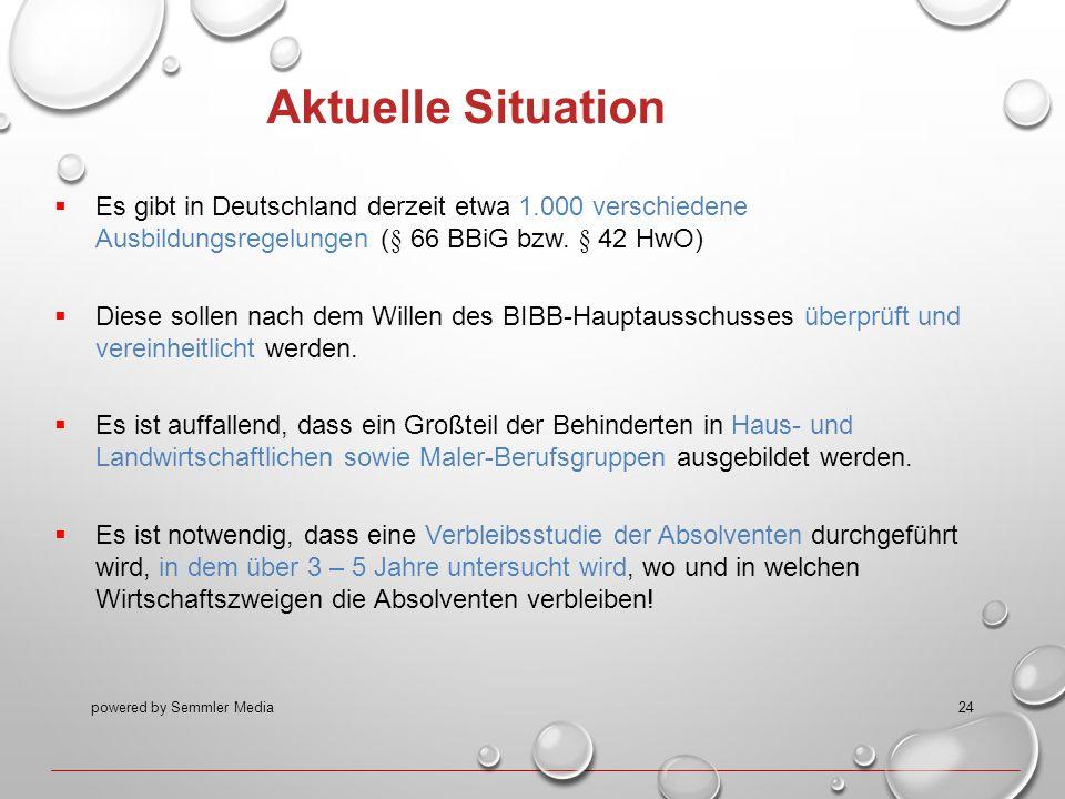 Aktuelle Situation Es gibt in Deutschland derzeit etwa 1.000 verschiedene Ausbildungsregelungen (§ 66 BBiG bzw. § 42 HwO)