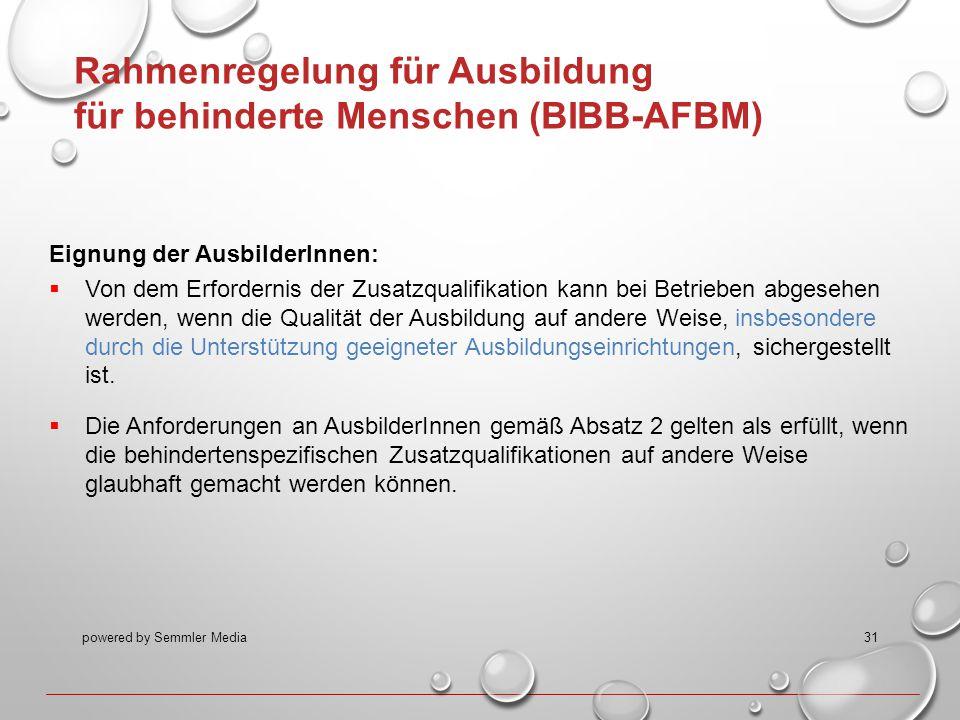 Rahmenregelung für Ausbildung für behinderte Menschen (BIBB-AFBM)