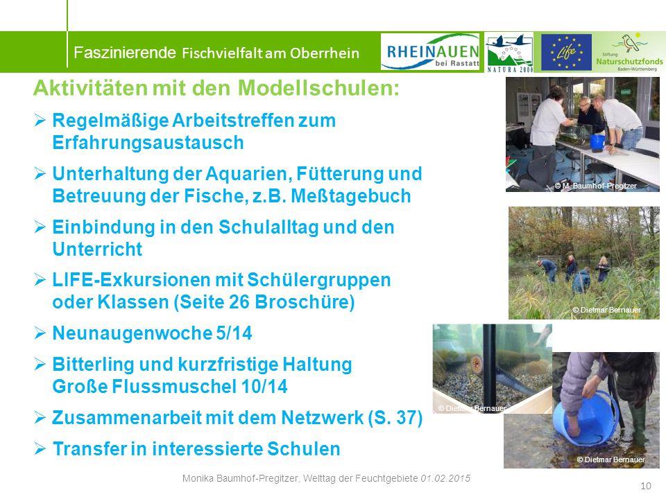 Monika Baumhof-Pregitzer, Welttag der Feuchtgebiete 01.02.2015