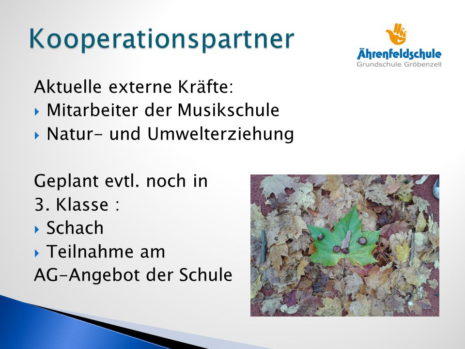 Kooperationspartner Aktuelle externe Kräfte: