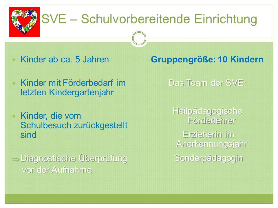 SVE – Schulvorbereitende Einrichtung