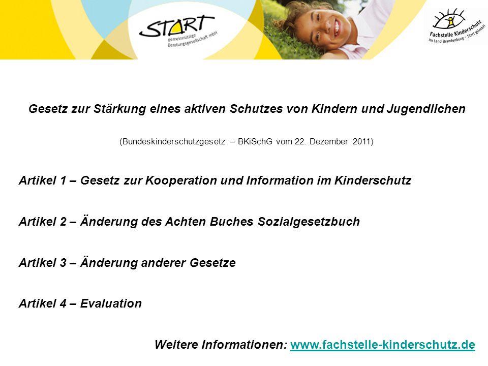 (Bundeskinderschutzgesetz – BKiSchG vom 22. Dezember 2011)