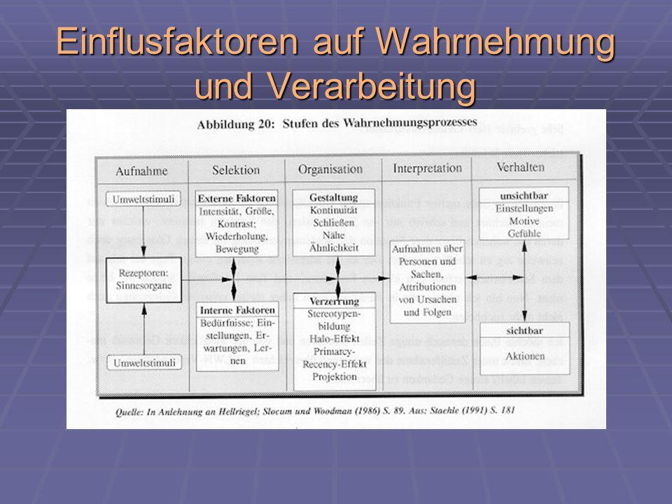 Einflusfaktoren auf Wahrnehmung und Verarbeitung