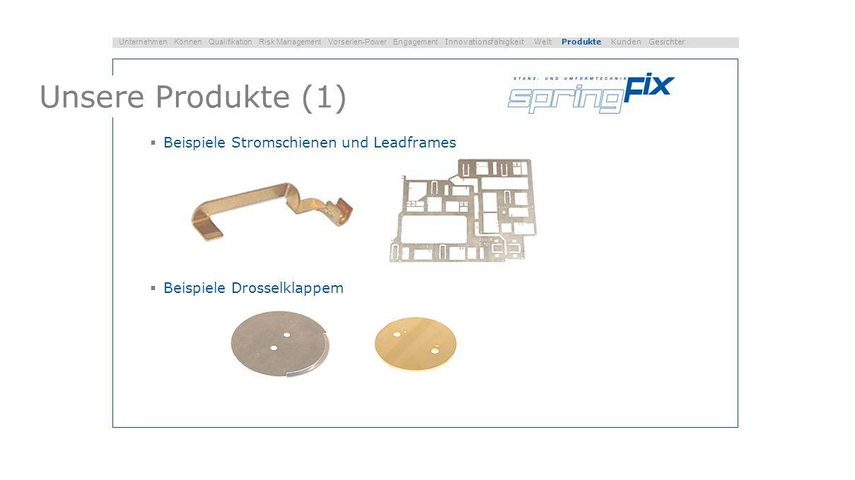 Unsere Produkte (1) Beispiele Stromschienen und Leadframes
