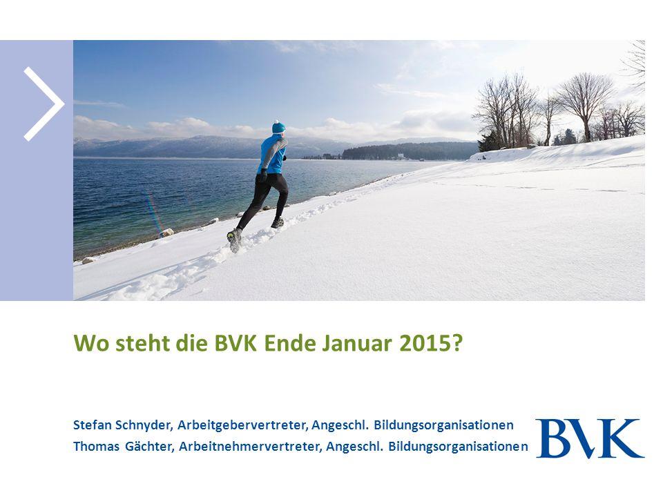 Wo steht die BVK Ende Januar 2015