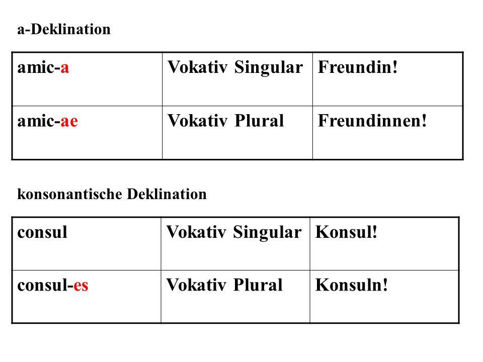 amic-a Vokativ Singular Freundin! amic-ae Vokativ Plural Freundinnen!