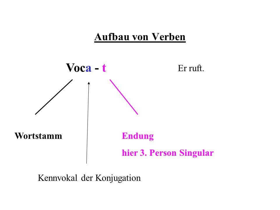 Voca - t Aufbau von Verben Er ruft. Wortstamm Endung