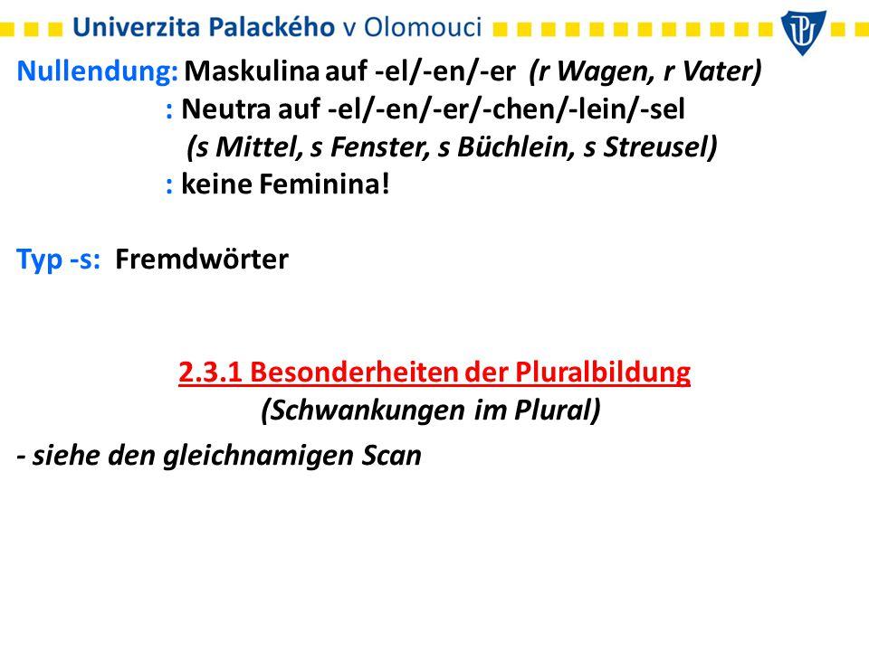 2.3.1 Besonderheiten der Pluralbildung (Schwankungen im Plural)