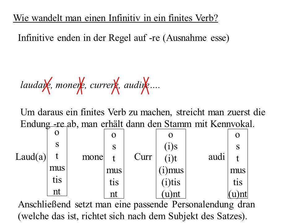Wie wandelt man einen Infinitiv in ein finites Verb
