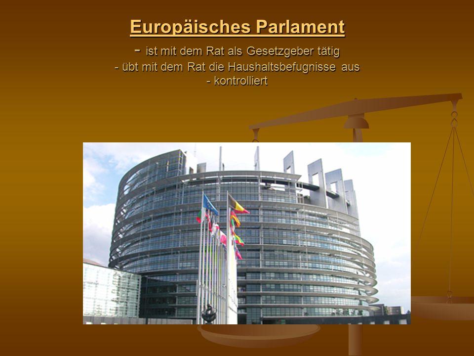 Europäisches Parlament - ist mit dem Rat als Gesetzgeber tätig - übt mit dem Rat die Haushaltsbefugnisse aus - kontrolliert