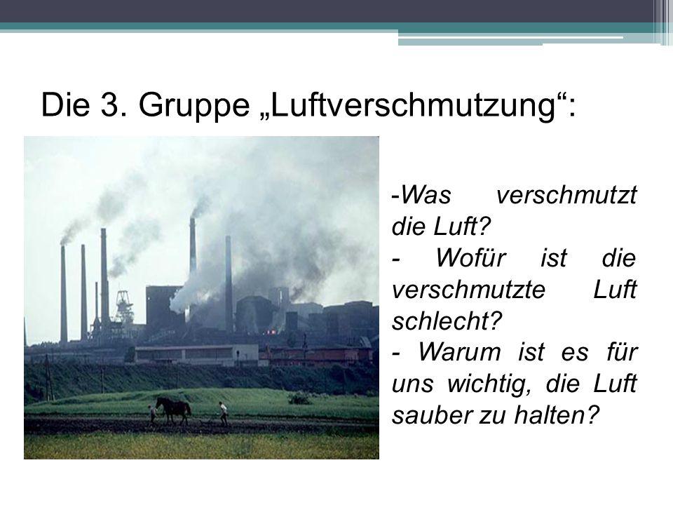 """Die 3. Gruppe """"Luftverschmutzung :"""