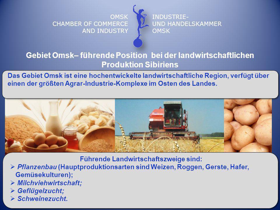 Gebiet Omsk– führende Position bei der landwirtschaftlichen