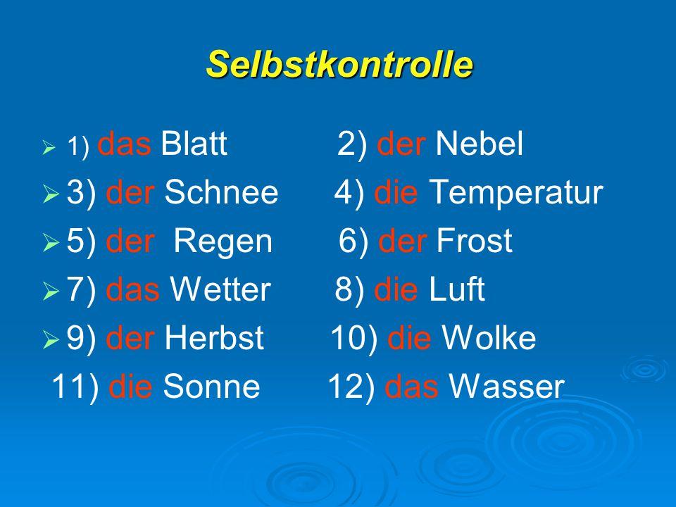 Selbstkontrolle 3) der Schnee 4) die Temperatur