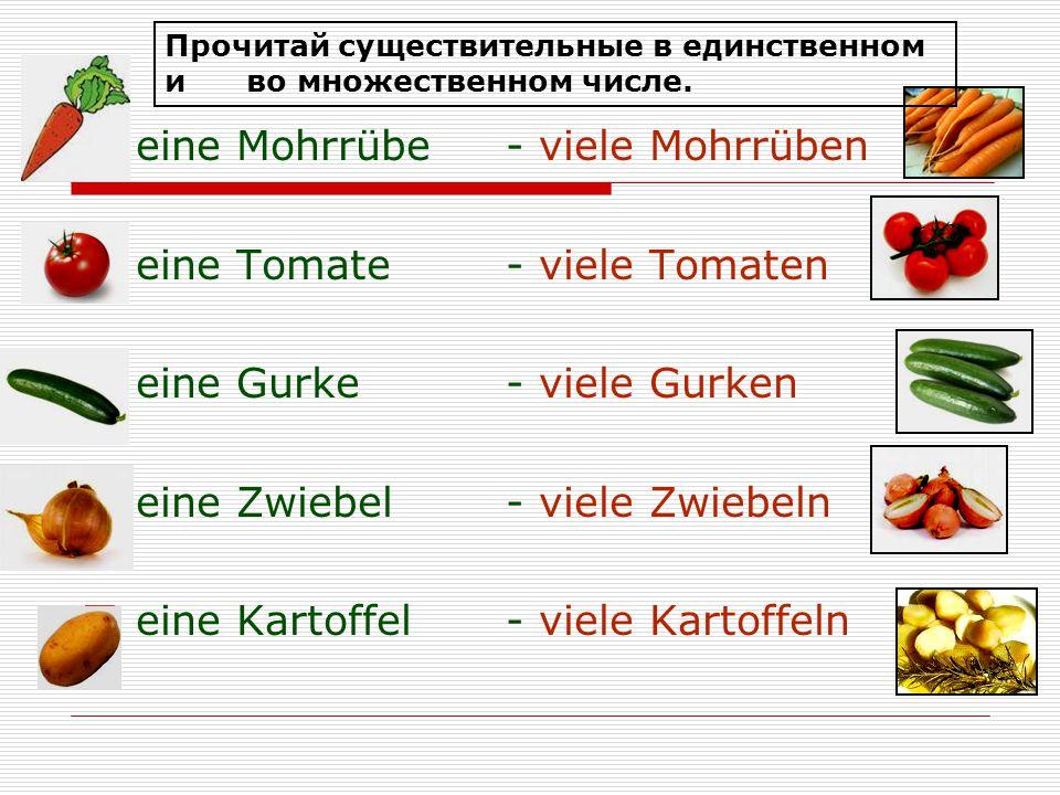 eine Mohrrübe - viele Mohrrüben eine Tomate - viele Tomaten