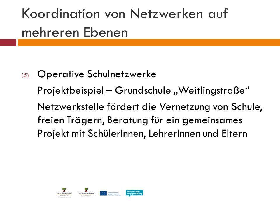 Koordination von Netzwerken auf mehreren Ebenen