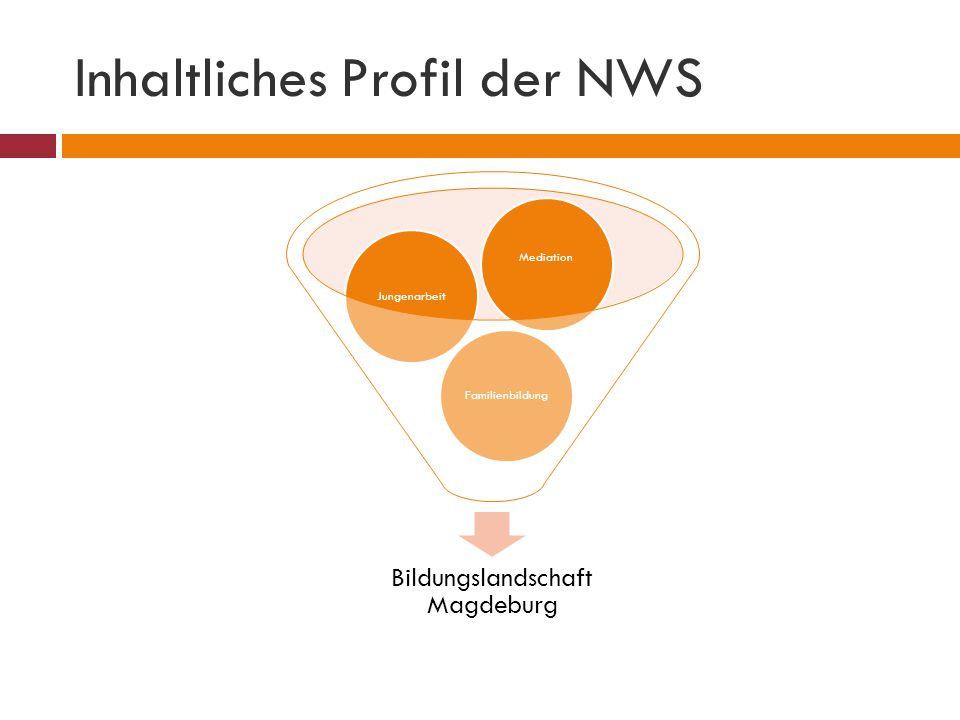Inhaltliches Profil der NWS