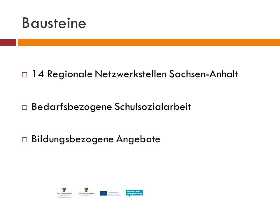 Bausteine 14 Regionale Netzwerkstellen Sachsen-Anhalt
