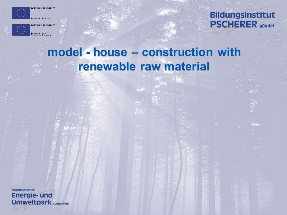 model - house – construction with renewable raw material