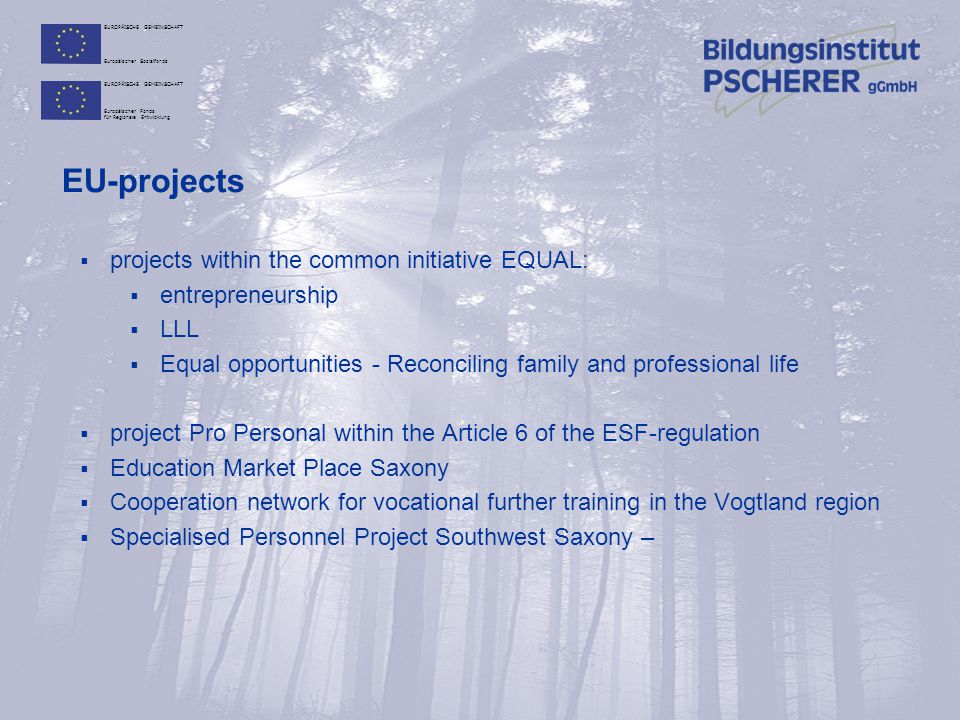 EU-projects projects within the common initiative EQUAL: