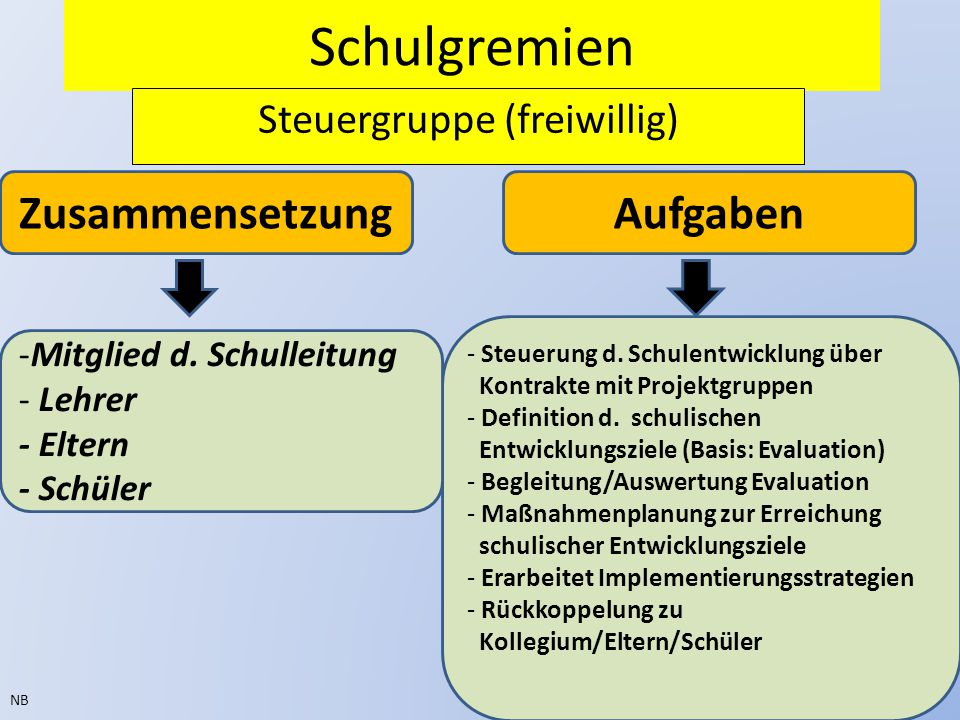 Steuergruppe (freiwillig)