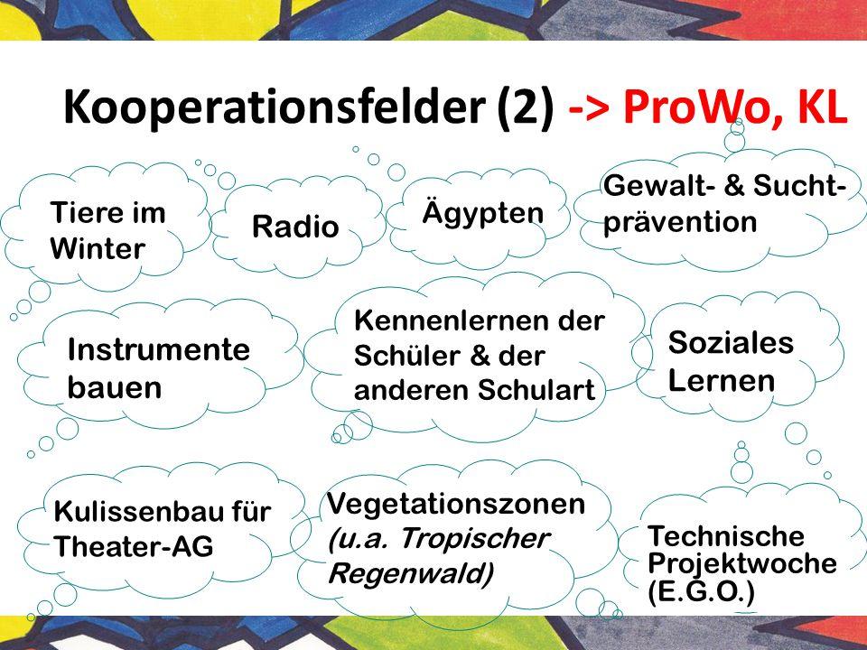 Kooperationsfelder (2) -> ProWo, KL