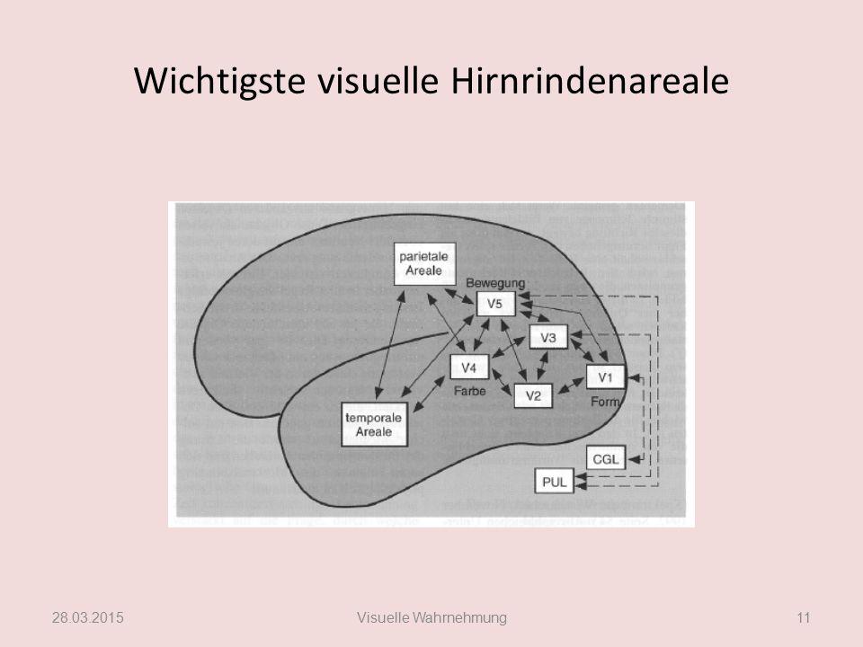 Wichtigste visuelle Hirnrindenareale
