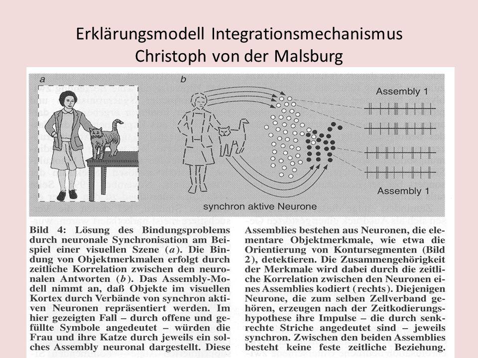 Erklärungsmodell Integrationsmechanismus Christoph von der Malsburg