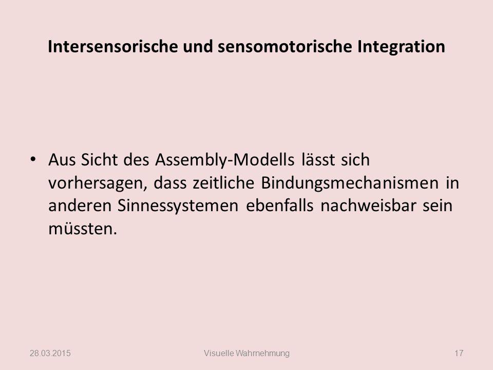 Intersensorische und sensomotorische Integration