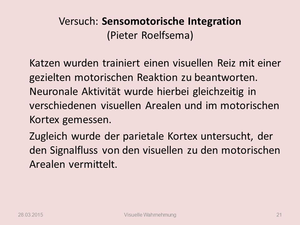 Versuch: Sensomotorische Integration (Pieter Roelfsema)