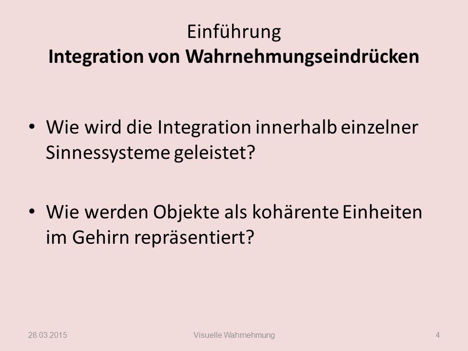 Einführung Integration von Wahrnehmungseindrücken