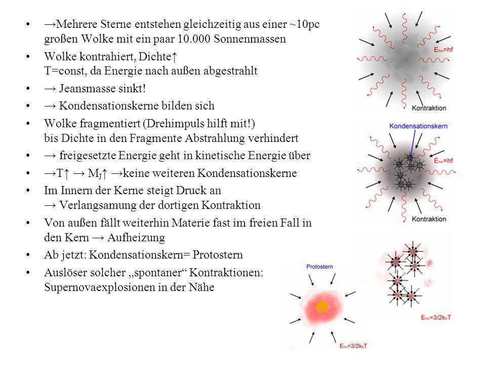 →Mehrere Sterne entstehen gleichzeitig aus einer ~10pc großen Wolke mit ein paar 10.000 Sonnenmassen