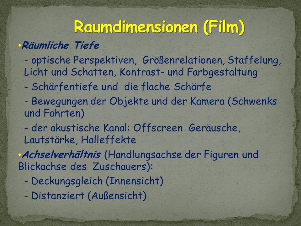 Raumdimensionen (Film)
