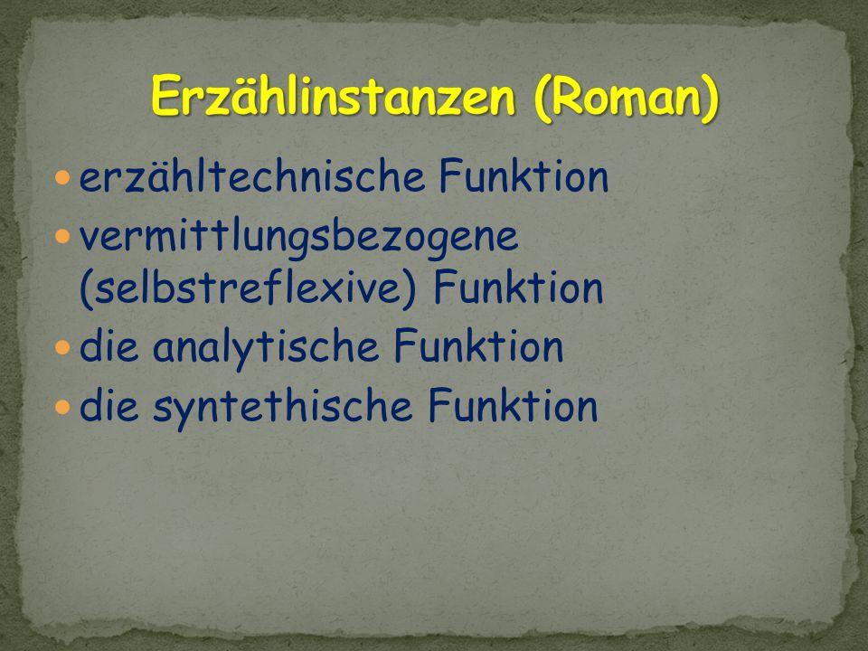 Erzählinstanzen (Roman)