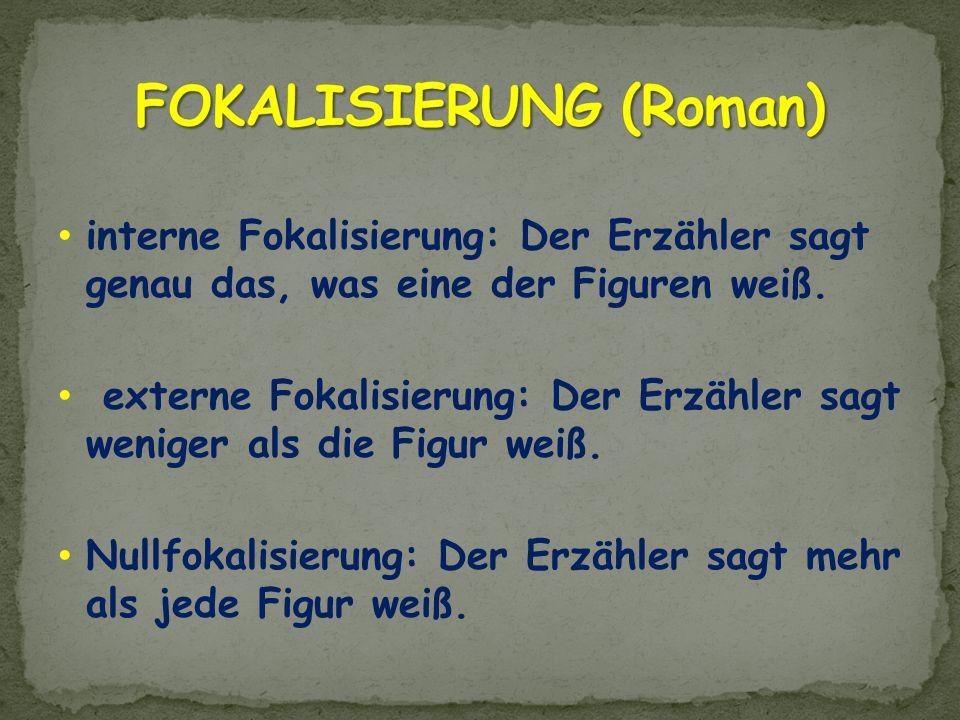FOKALISIERUNG (Roman)