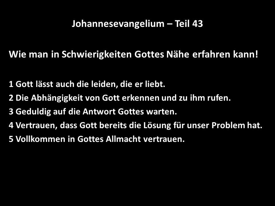 Johannesevangelium – Teil 43