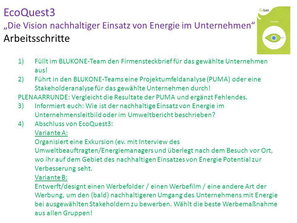 """EcoQuest3 """"Die Vision nachhaltiger Einsatz von Energie im Unternehmen Arbeitsschritte"""