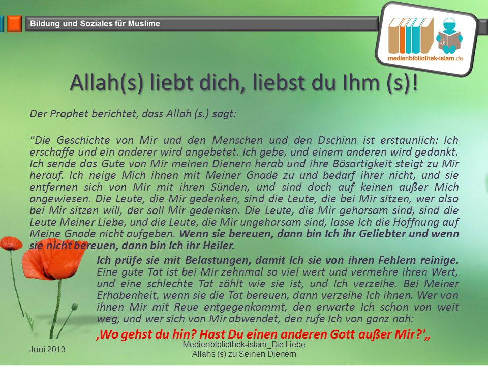 Allah(s) liebt dich, liebst du Ihm (s)!
