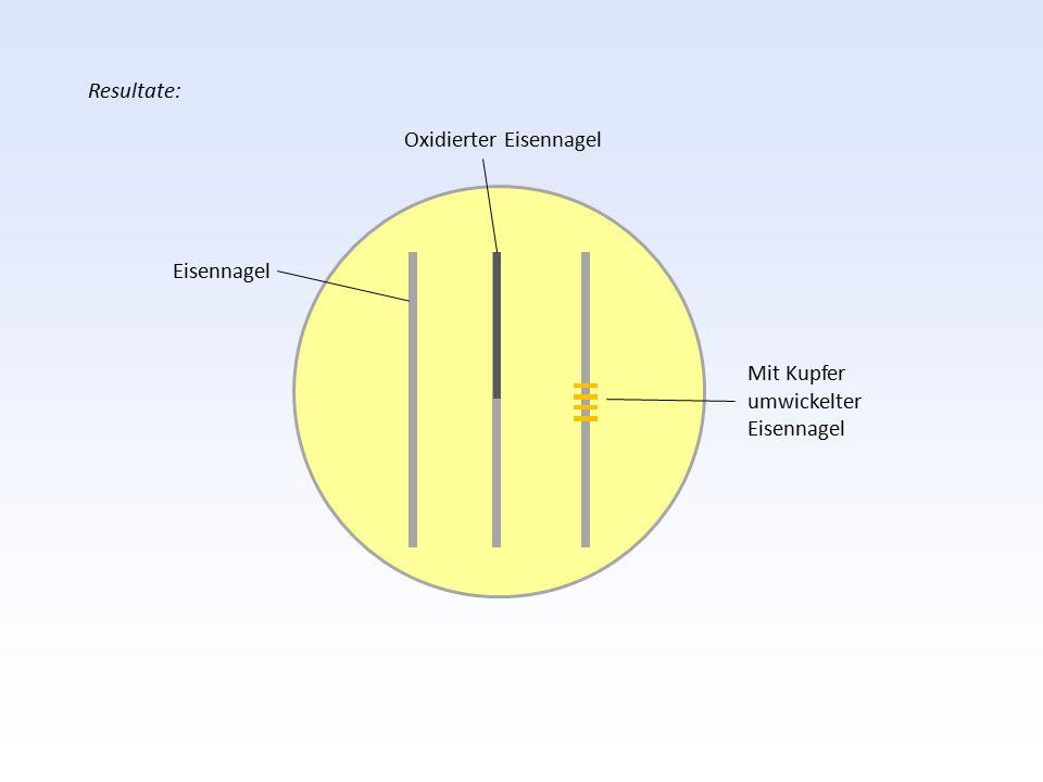 Resultate: Oxidierter Eisennagel Eisennagel Mit Kupfer umwickelter Eisennagel