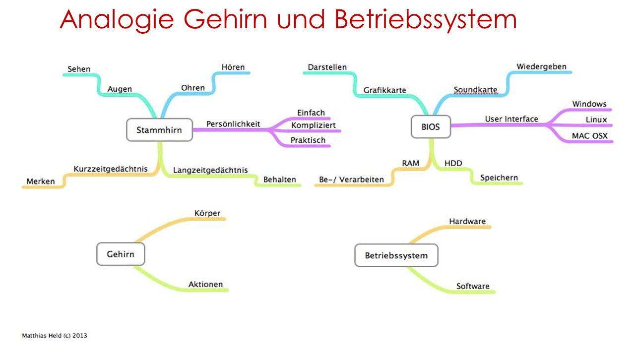 Analogie Gehirn und Betriebssystem