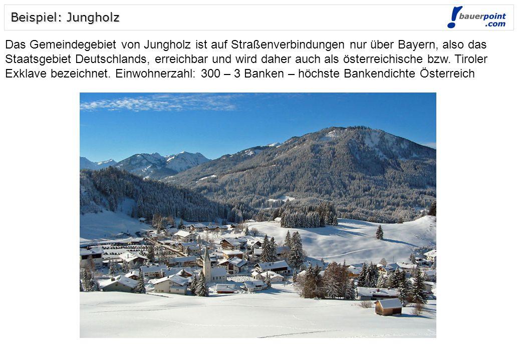 Beispiel: Jungholz