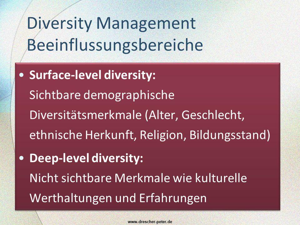 Diversity Management Beeinflussungsbereiche