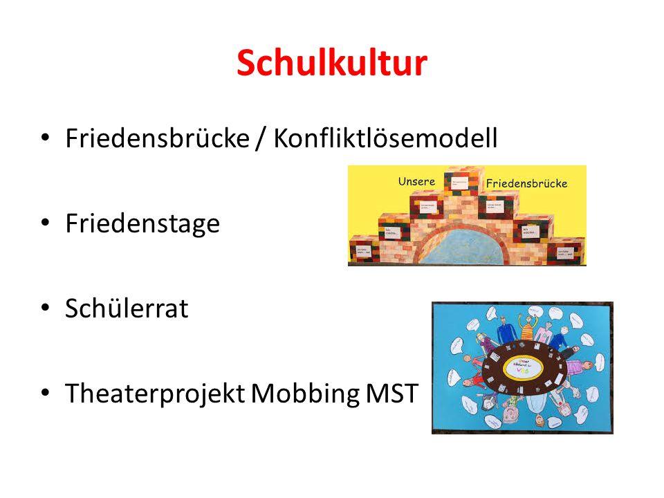 Schulkultur Friedensbrücke / Konfliktlösemodell Friedenstage