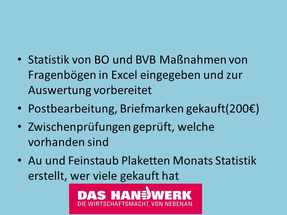 Statistik von BO und BVB Maßnahmen von Fragenbögen in Excel eingegeben und zur Auswertung vorbereitet
