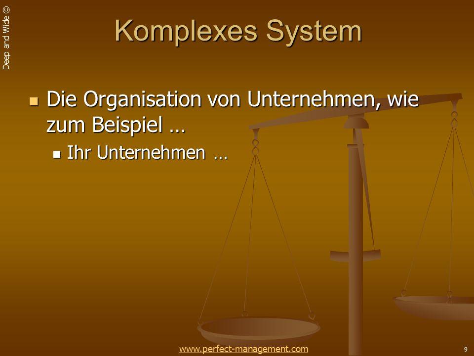 Komplexes System Die Organisation von Unternehmen, wie zum Beispiel …