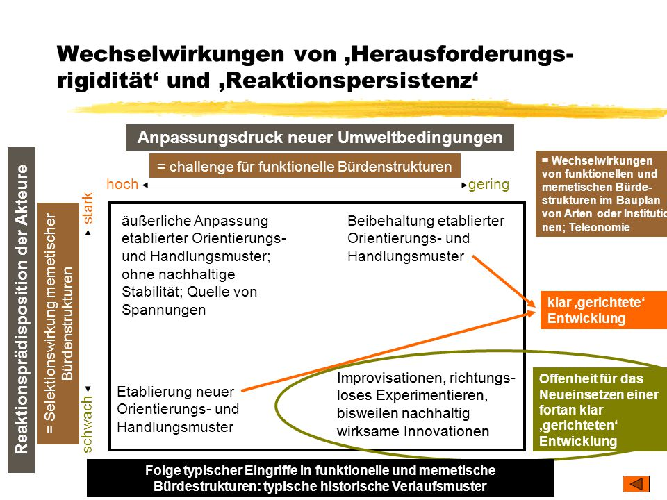 Wechselwirkungen von 'Herausforderungs-rigidität' und 'Reaktionspersistenz'